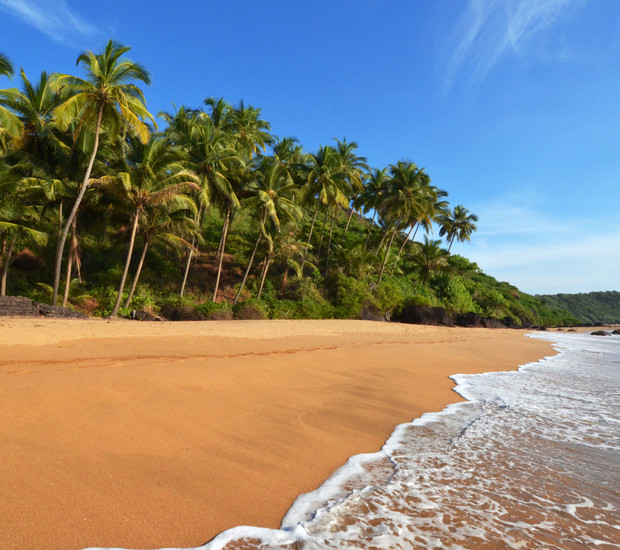 Amazing Beach of Goa