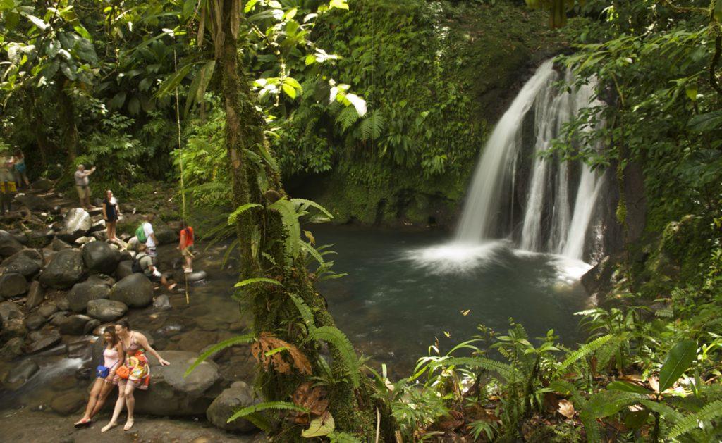 Wonder of Guadeloupe