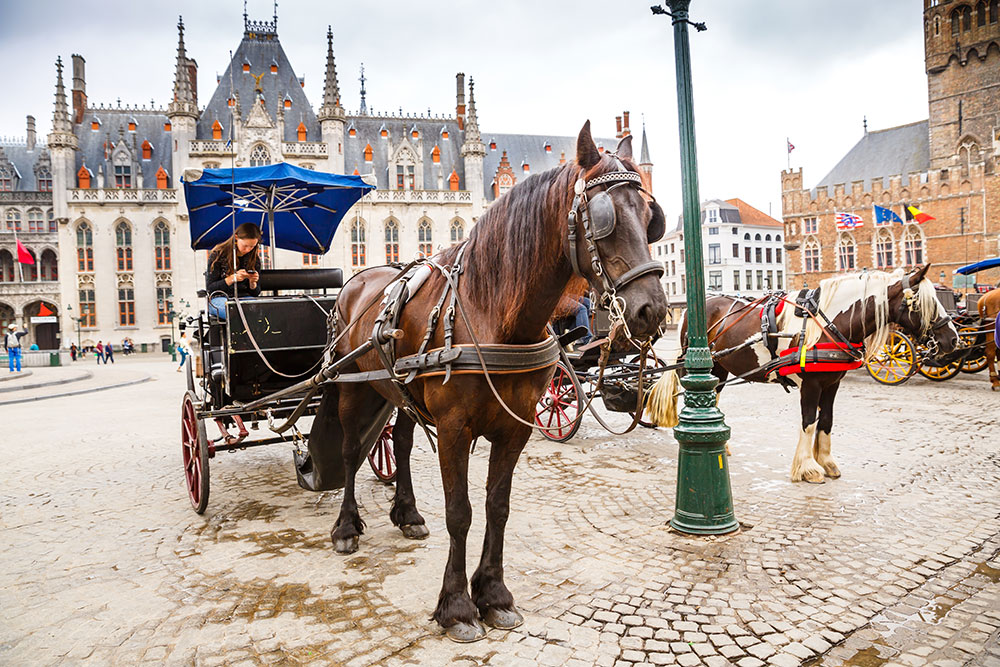 The horse-drawn carriages in Brugge