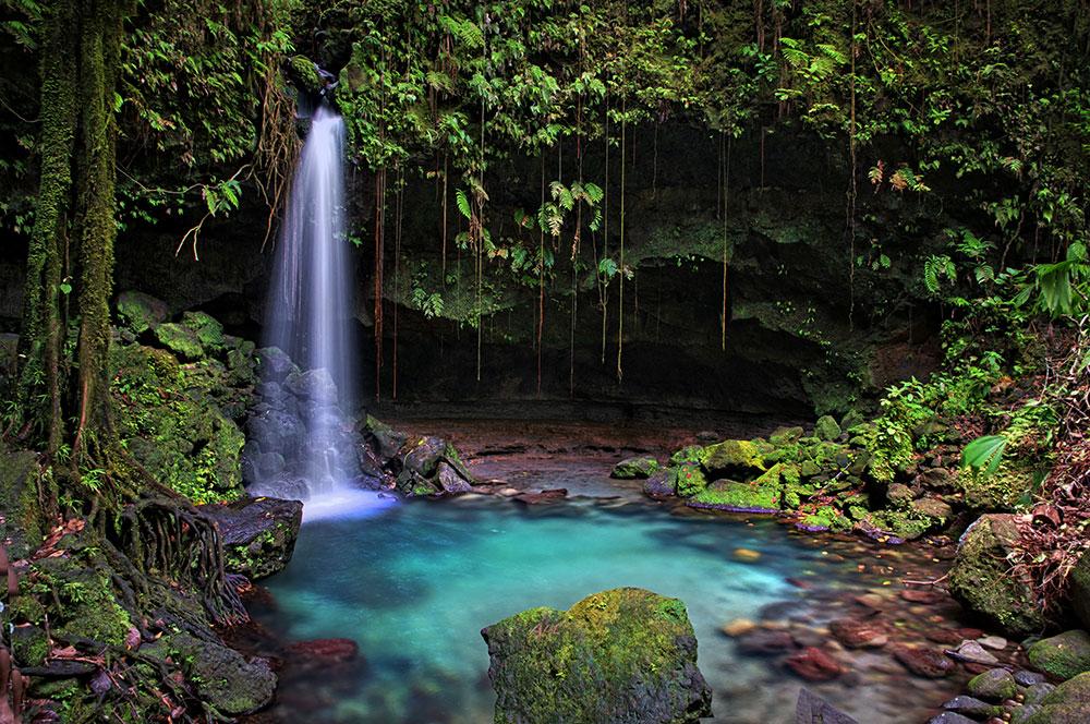 Emerald Pool, Dominica