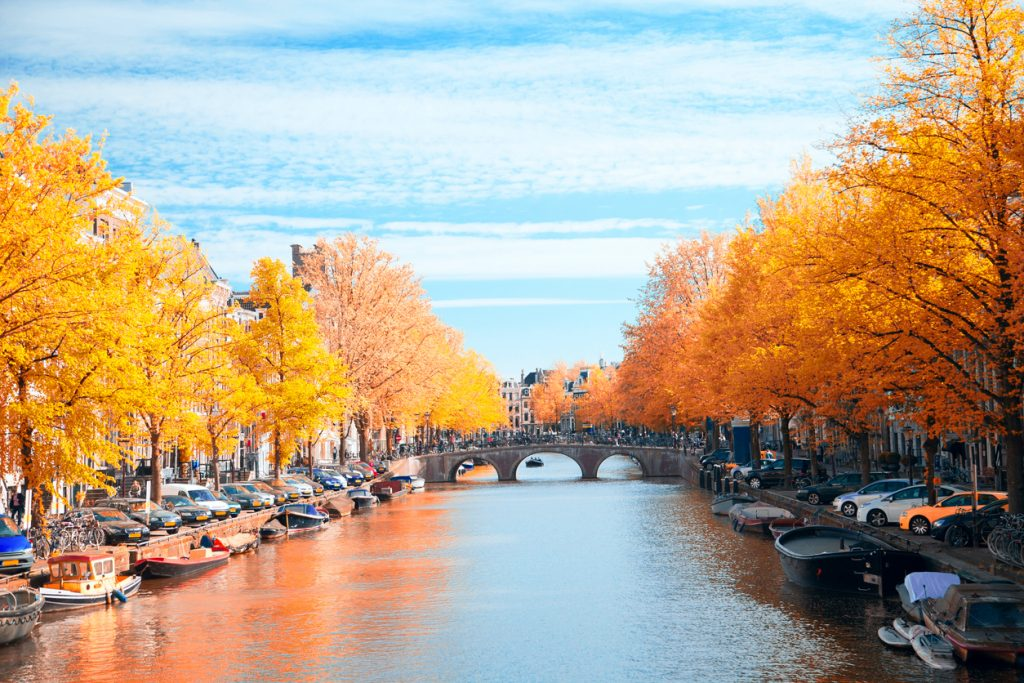 Golden Amsterdam in Autumn - Fall