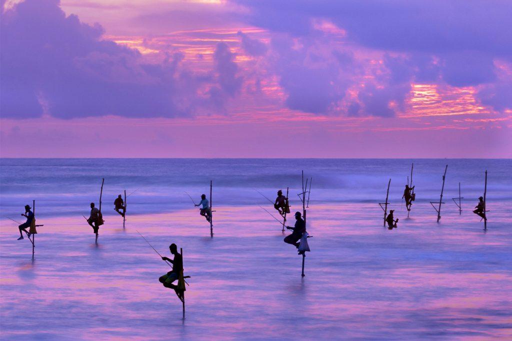 Fishermen on stilts at the sunset, Sri Lanka