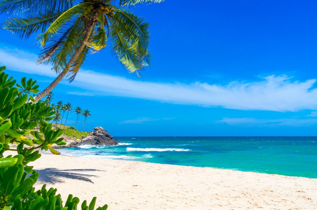 Beach Vacations In Sri Lanka