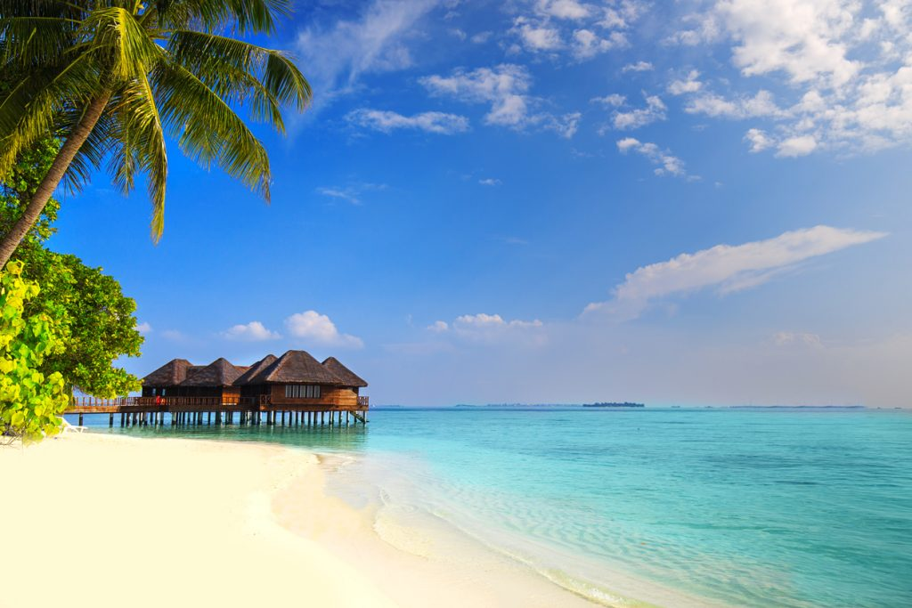 A Maldives island with sandy beach, palm trees, overwater bungalows and turquoise clear water