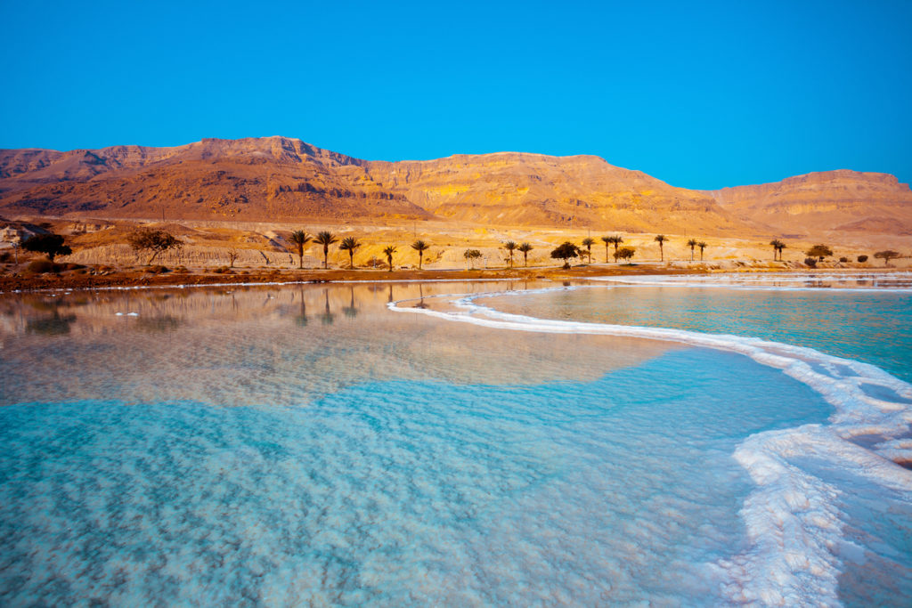 Dead Sea seashore with palm trees and mountains