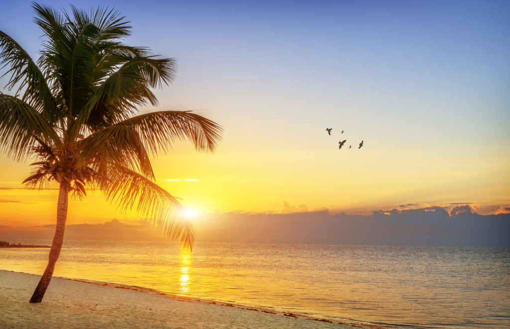 Beautiful sunrise at Key West, Florida, USA