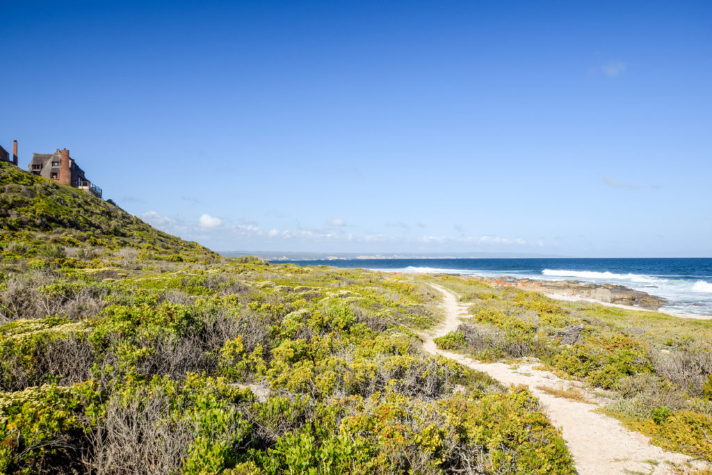 Beautiful view of the coast at Bosbokduin Nature Reserve in Still Bay, South Africa. It is known for its thatched roofed houses.
