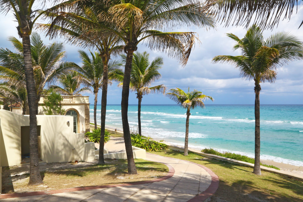 Beautiful Palm Beach Shoreline