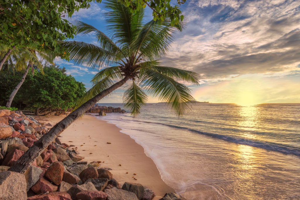 Jamaica beach at sunset