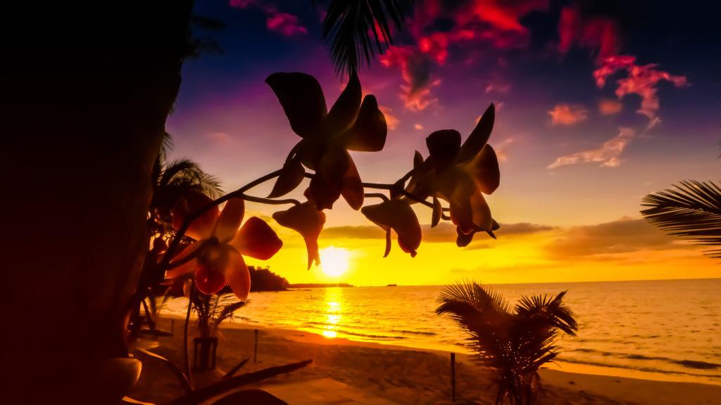 Beautiful Sunset of Saint Lucia