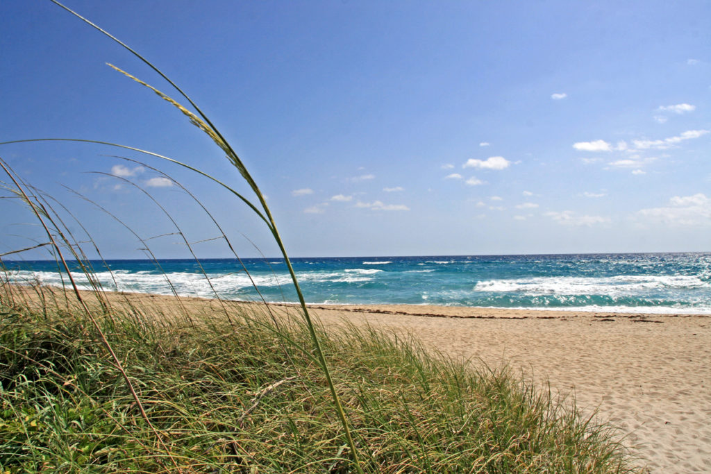 West Palm Beach Shoreline