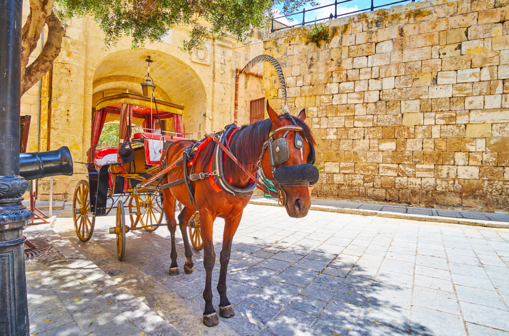 Vintage style tour along the streets of Mdina, Malta