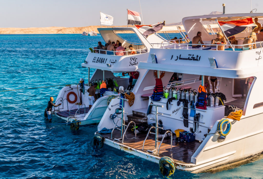 Boat trip and diving schools in Egypt