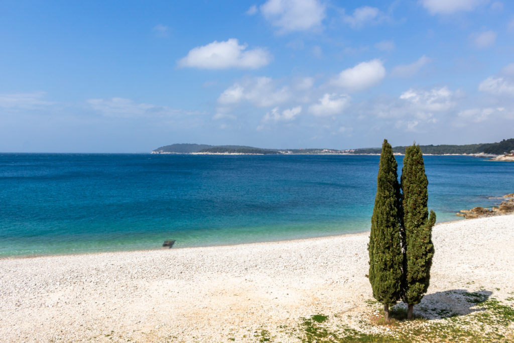 Cypress trees on Ambrela Beach Pula Croatia