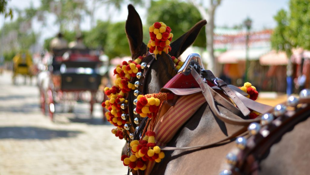 Traditional Spanish Horse and Cart