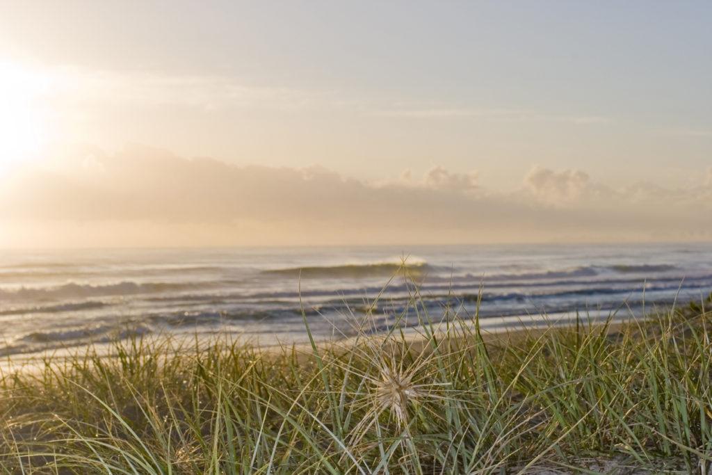 Visit Siesta Key Florida