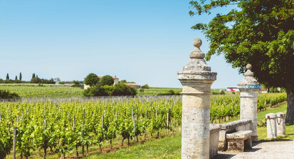 Saint Emilion wine, Chateau Soutard
