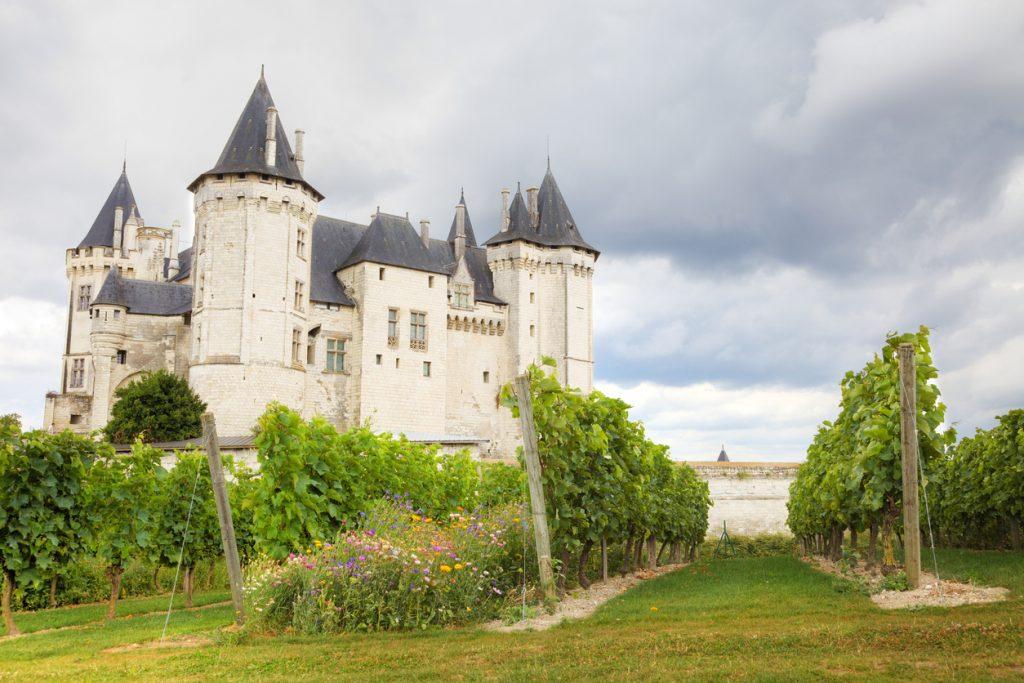 Saumur chateau and vineyard