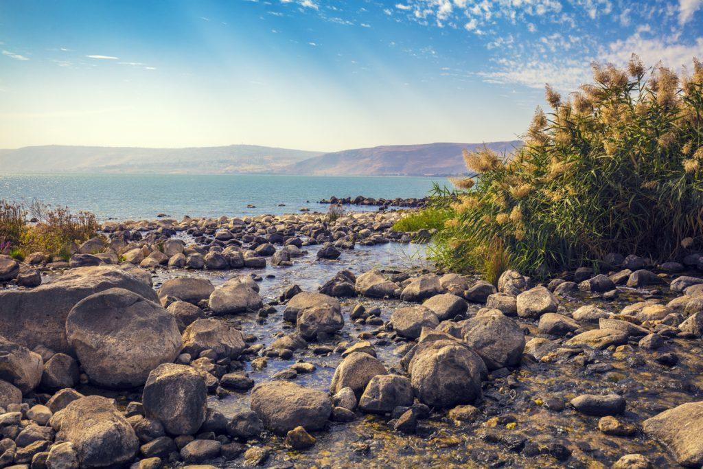 The coast of the Sea of Galilee near Ein Eyov Waterfall in Tabgha