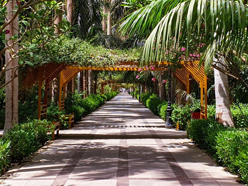 Botanical Gardens in Aswan Egypt