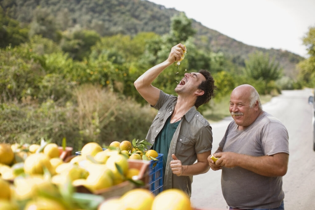 Fresh Greek Lemons and Oranges