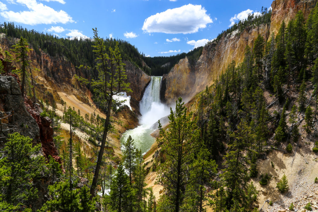 Lower falls of the Yellowstone in summer