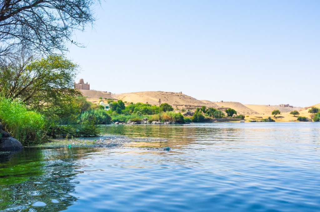 The Nile banks are covered with green plants, Aswan, Egypt.