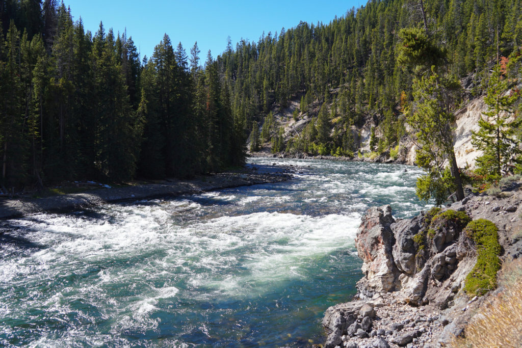 The Yellowstone River Before the Falls
