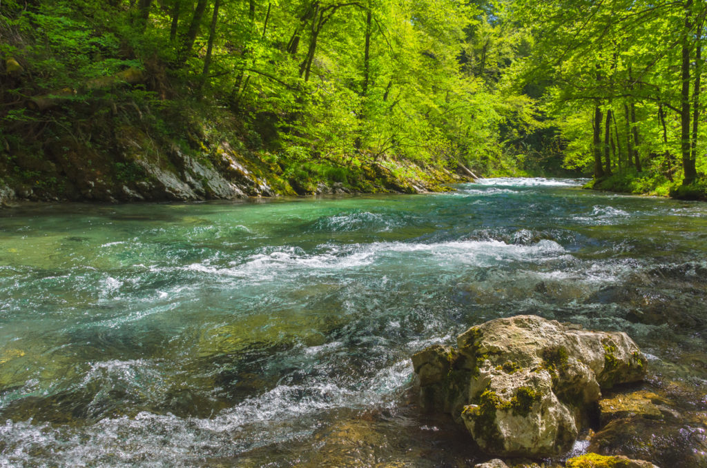 Fast clear waters of Radovna river in Vintgar Gorge Canyon near Bled, Julian Alps, Slovenia