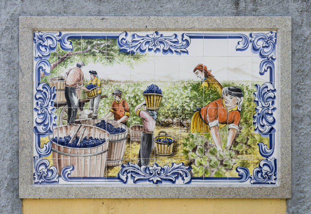 Ceramic tiles depiciting the grapes vintage in the Douro Valley, where the world's famous Port Wine is produced