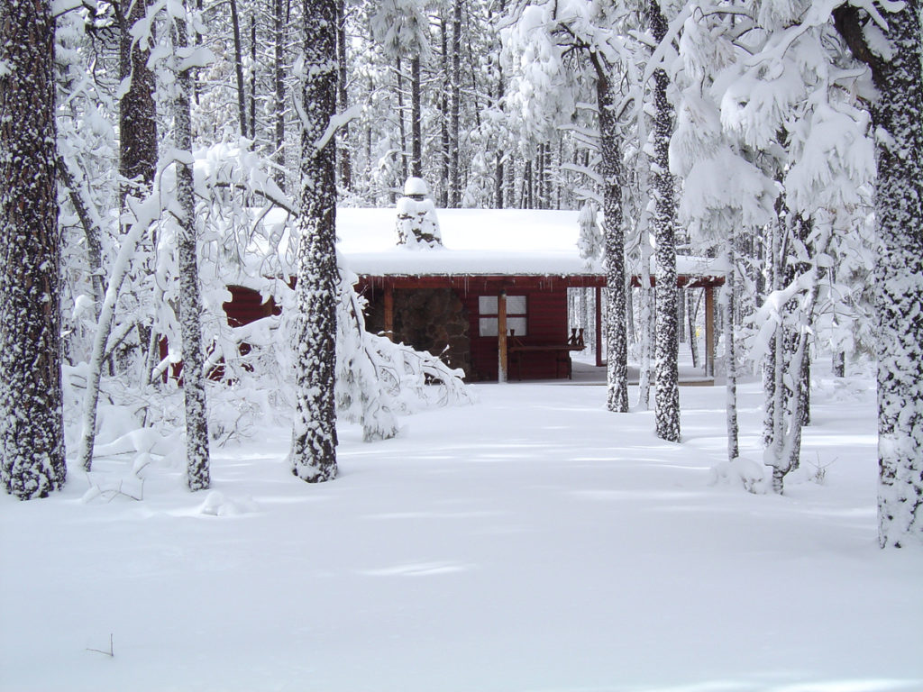 Cabin in the woods of Northern Arizona