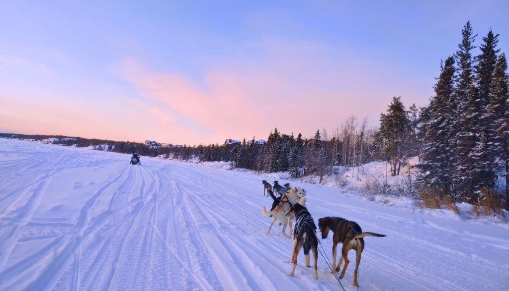 Dog Sledding with a beautiful sky above the frozen lake covered with snow in Canada