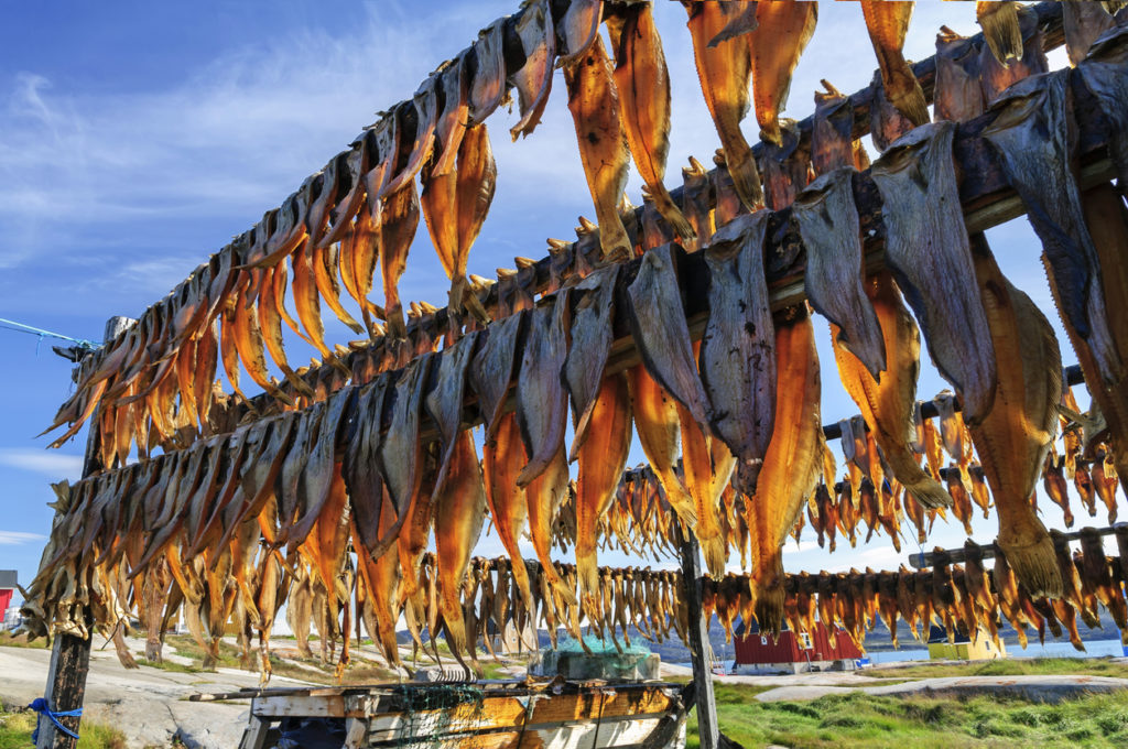 Dried fish in Rodebay settlement - Greenland