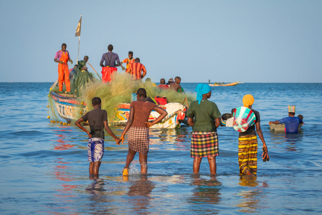 People carrying fish from the boats to the beach