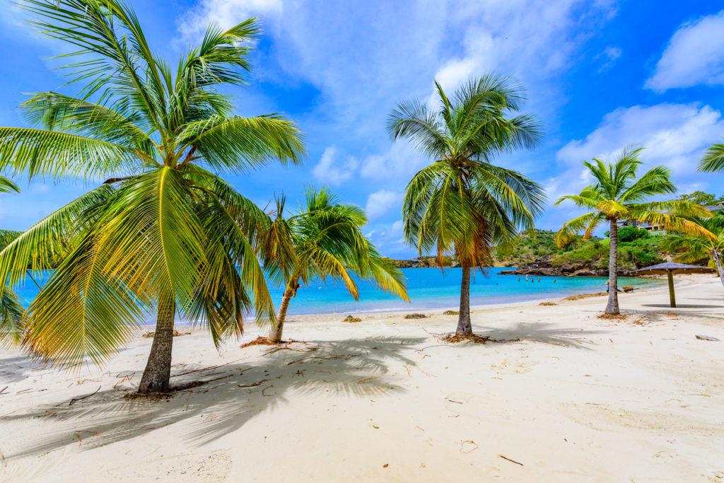 Escape to Antigua