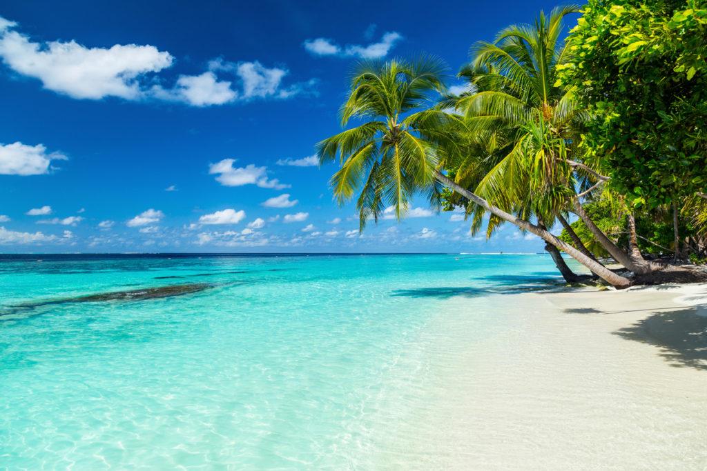 Island Paradise in the Maldives