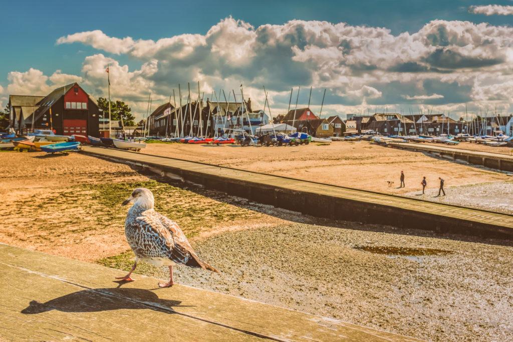 Explore the Kent Coast