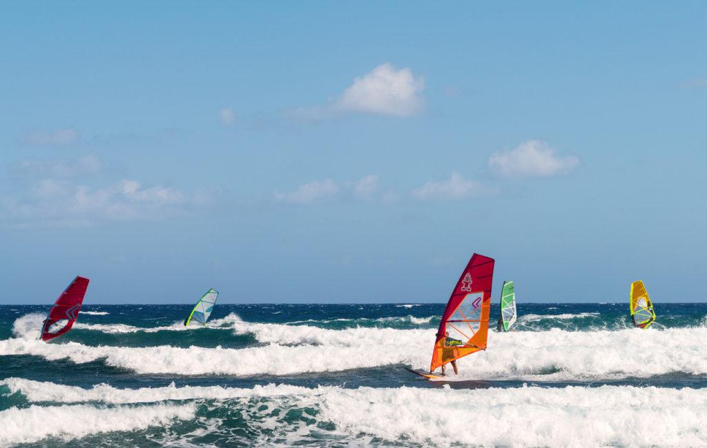 Windsurfers in Tenerife